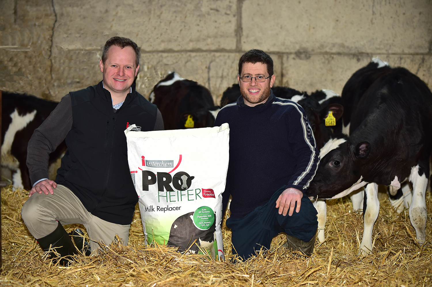 ProHeifer-Milk-Replacement-Heifer-Replacements-Andrew-Collier-Wicklow