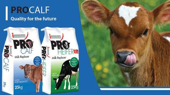 procalf-milk-replacer